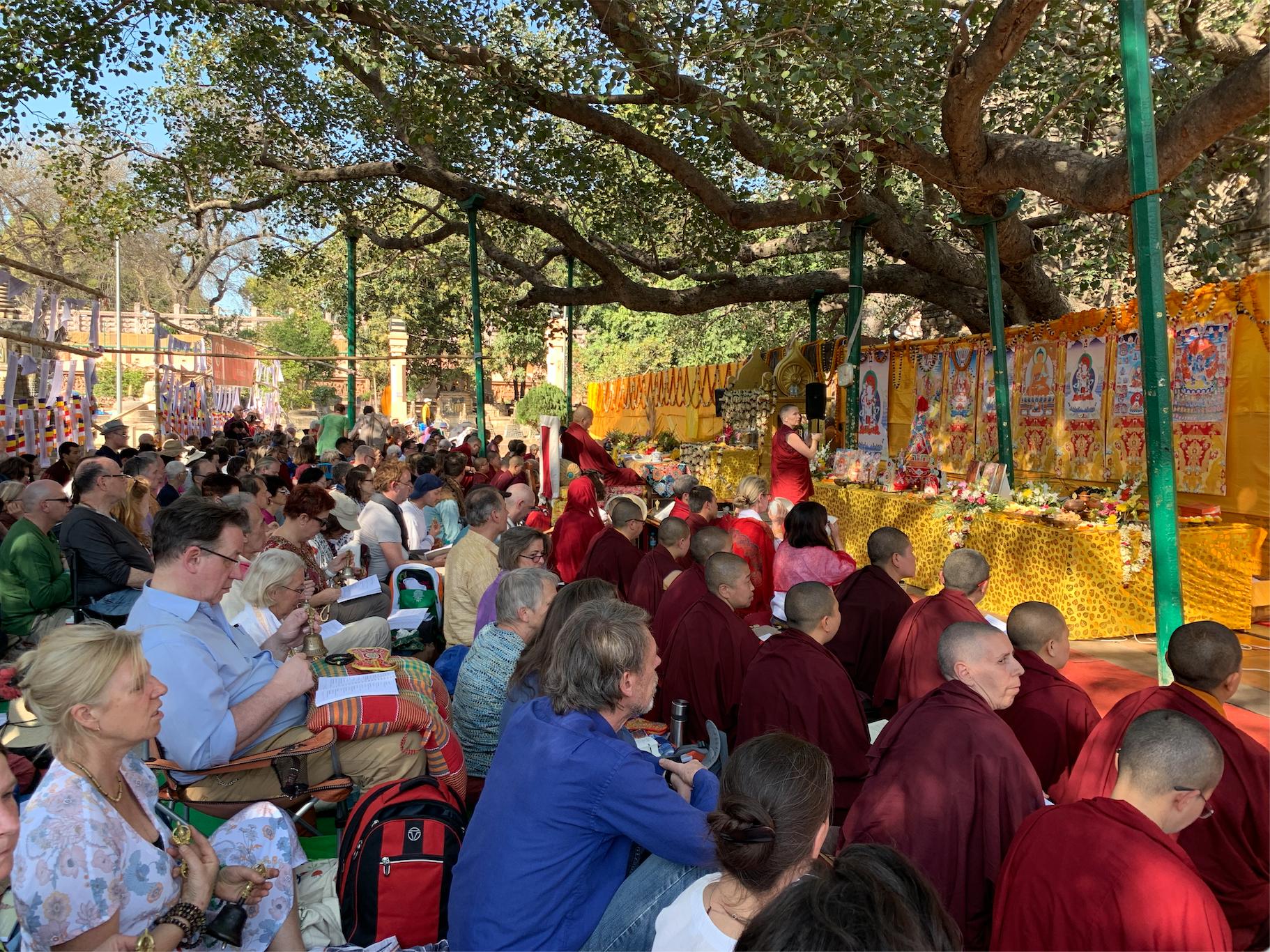 Rigpa Sangha. Rigpa Gebetsfest, März 2019, Bodhgaya (Indien)