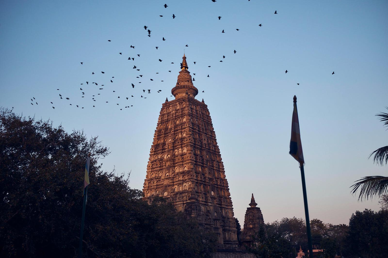Mahabodhi-Tempel. Rigpa Gebetsfest, März 2019, Bodhgaya (Indien)